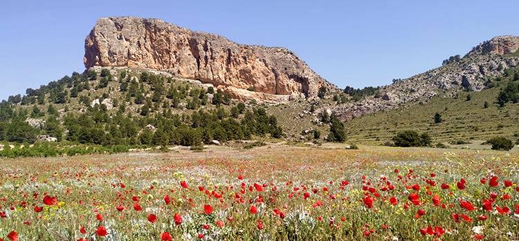 Posada Peñarrubia la mejor opción para visitar la Sierra del Segura