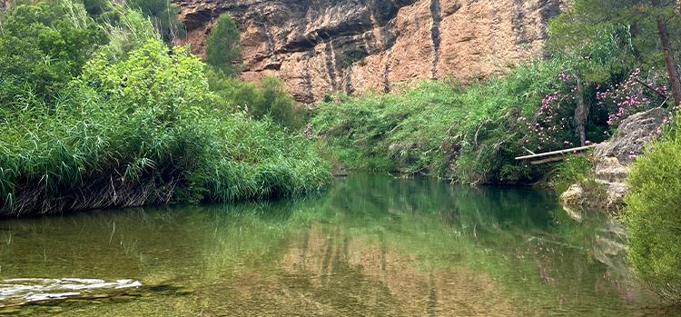 Zonas de baño Sierra del Segura